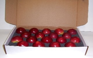 18 COUNT SINGLE LAYER APPLE GIFT BOX